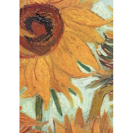 Vase with Twelve Sunflowers c1888 (detail) Rolled Canvas Art - Vincent Van Gogh (28 x (12 Sunflowers In A Vase Van Gogh)