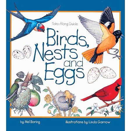 Birds, Nests, and Eggs -