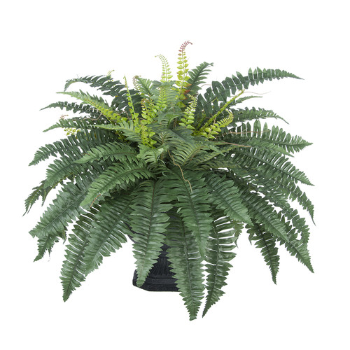 House of Silk Flowers Inc. Artificial Fern Desk Top Plant in Decorative Urn