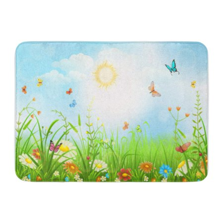 SIDONKU Blue Summer Spring Meadow Green Grass Flowers and Butterflies Scenery Doormat Floor Rug Bath Mat 30x18 (Meadow Mat)
