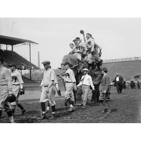 Classic Republican Elephant - Republican baseball team with Elephant Print Wall Art