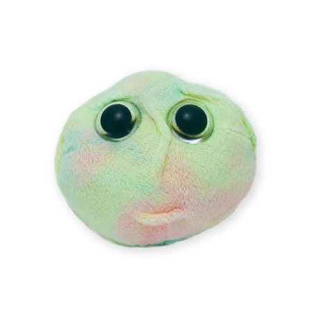 Hematopoietic Stem Cell Educational Plush Toy a52016358
