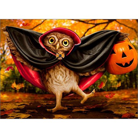 Avanti Press Vampire Owl Trick-Or-Treater Funny / Humorous Halloween Card