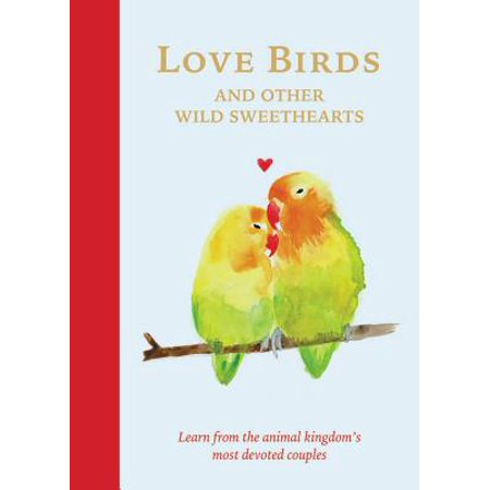 Love Birds and Other Wild Sweethearts : Learn from the animal kingdom's most devoted (Love Birds Animals)