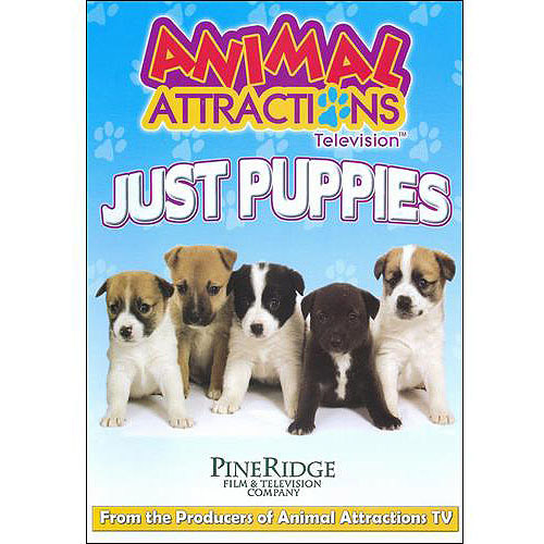 Animal Attractions Television: Just Puppies
