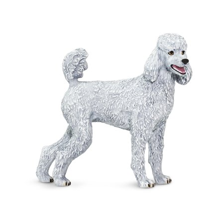 Best In Show Poodle Safari Ltd Animal Educational Kids Toy (Best Food For Toy Poodle)