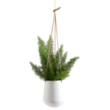Ashbury Leather Hanging Large Ceramic Planter White ()