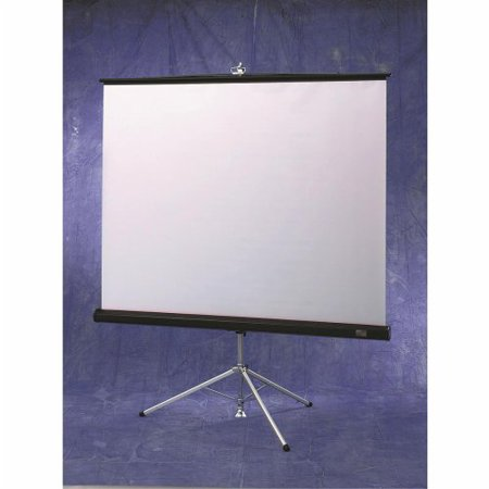 Draper Diplomat Matte White Portable Projection