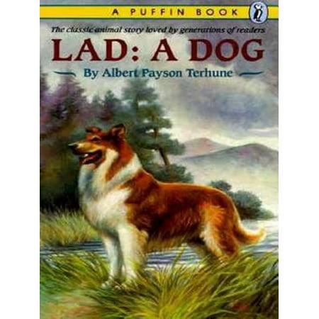 Lad - eBook ()