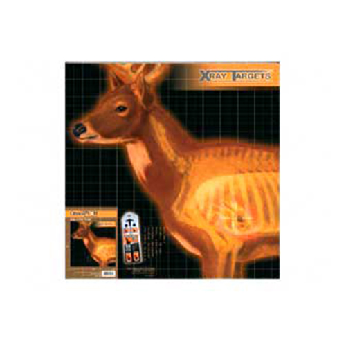 "Champion Traps and Targets Deer X-Ray Target, 25"" x 25"", 6pk"