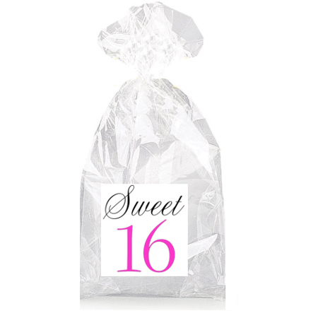 Sweet 16th Birthday Pink and Black  Party Favor Bags with Ties - 12pack (16th Birthday Favors)
