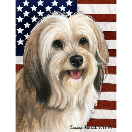 Tibetan Terrier Cream - Best of Breed  Patriotic II Garden