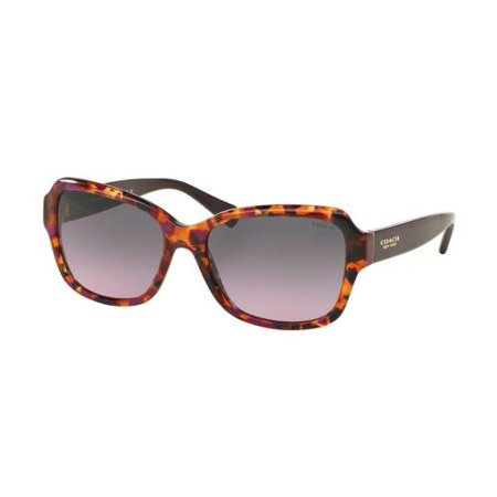 COACH Sunglasses HC 8160 533990 Purple Confetti/Purple (Coach Glasses For Women)