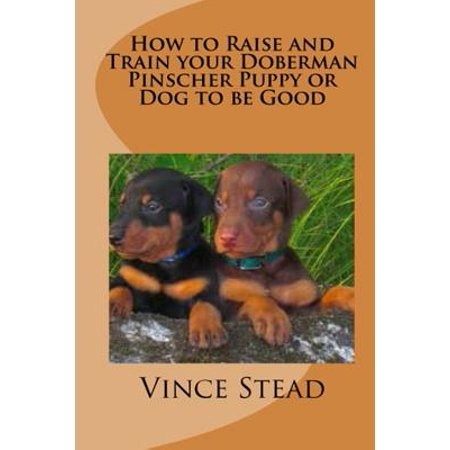 How to Raise and Train Your Doberman Pincher Puppy or Dog to Be (Information On Doberman Pinchers)