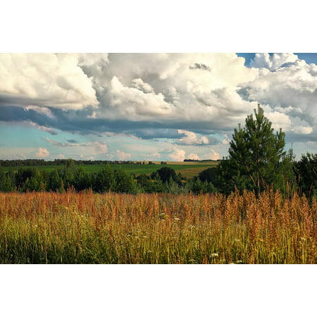 Russian Landscape - Peel-n-Stick Poster of Landscape Udmurtia Wheat Fields Russia Nature Poster 24x16 Adhesive Sticker Poster Print