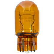 Wagner Lighting Bp7443na Natural Amber Miniature Bulb - Card Of 1