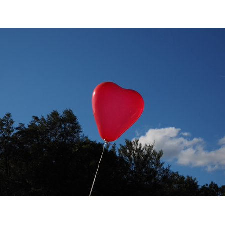 Framed Art For Your Wall Heart Romantic Love Romance Balloon Heart