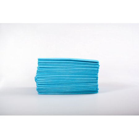"""400 ct 23 x 23"""" Puppy Housebreaking Wee Wee Training Pads"""