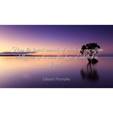 Edward Thorndike - From the lowest animals of which we can affirm intelligence up to man this type of intellect is found - Famous Quotes Laminated POSTER PRINT 24X20.](Lowest Price Print)