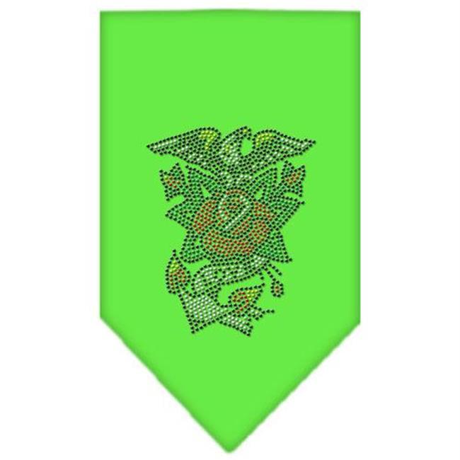 Eagle Rose Rhinestone Bandana Lime Green Large - image 1 of 1
