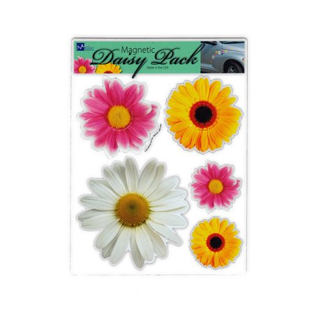 Magnet Variety Pack (5 Magnets) - Daisy Flowers (Multiple Colors) - Refrigerators, Cars, Mailboxes, Decoration - 2