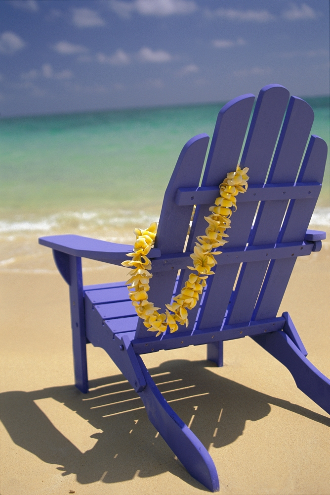 Close Up Blue Beach Chair With Plumeria Hanging On Side Facing Ocean Canvas  Art