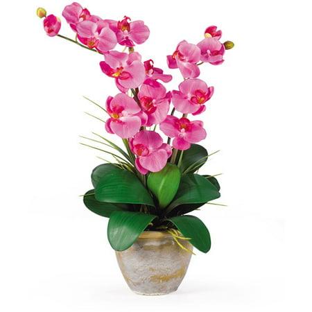 Nearly Natural Double Phalaenopsis Silk Orchid Flower Arrangement, Dark -