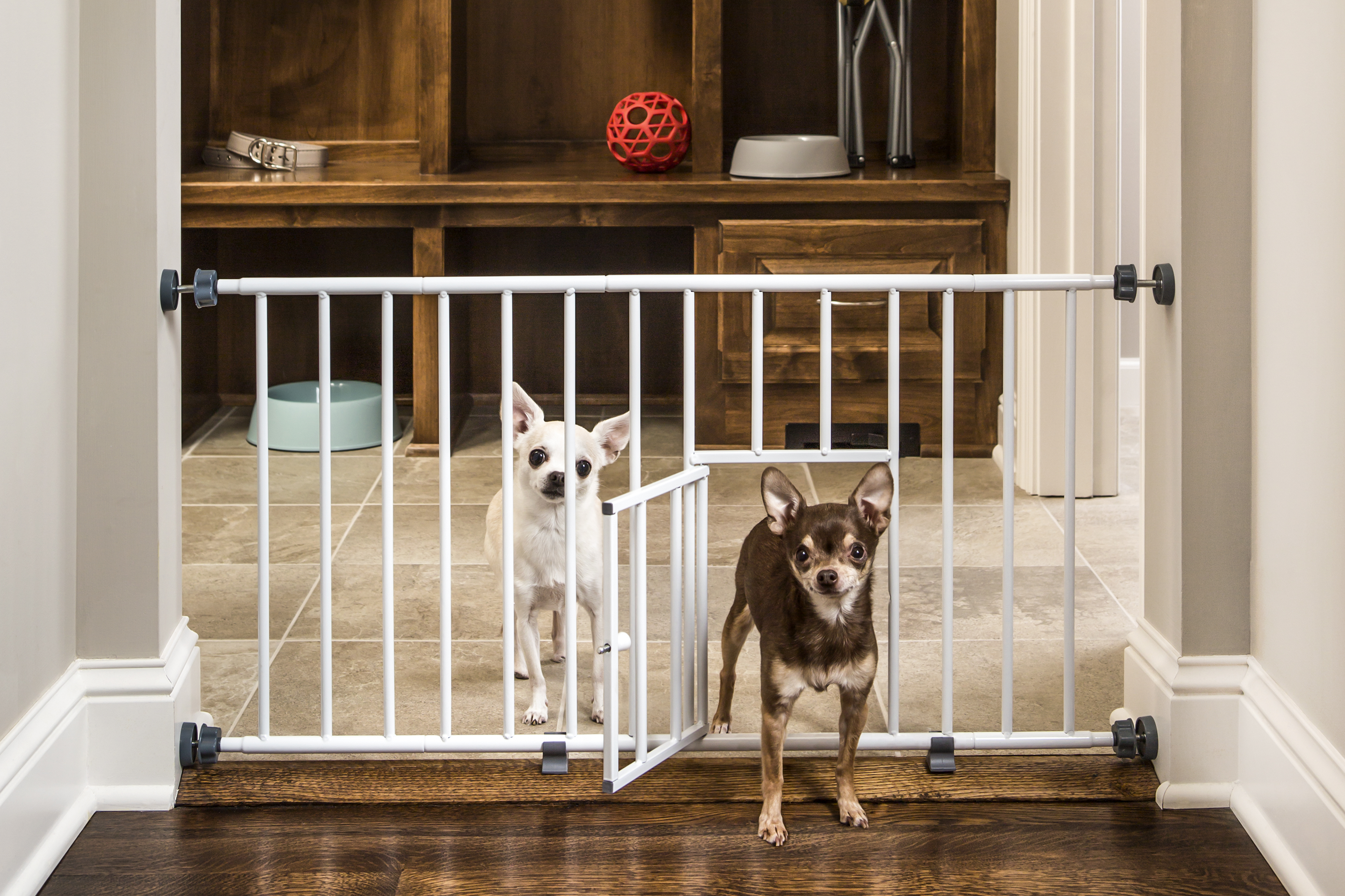 carlson mini gate with pet door image 1 of 6