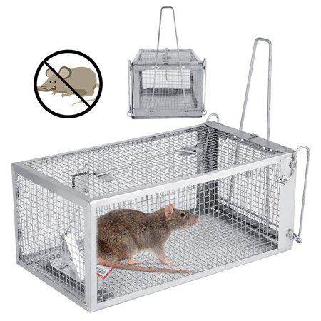 Dilwe Rat Mouse Mice Trap Small Live Animal Humane Cage Pest Rodent Squirrels Control Catch Bait 26.2 x 14 x (Best Bait For Grey Squirrels)