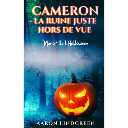 Cameron - La Ruine Juste Hors de Vue - eBook