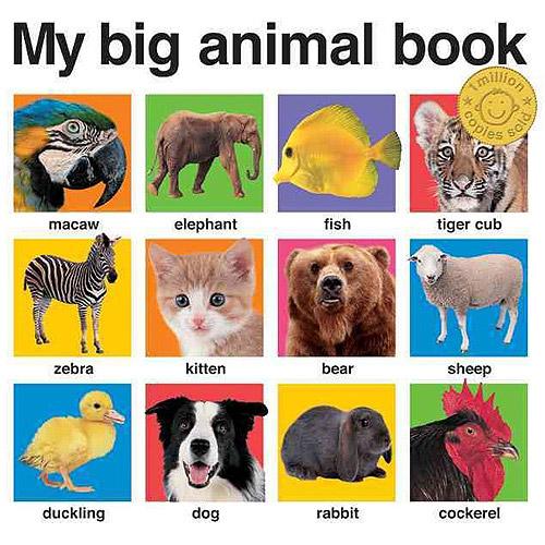 My Big Animal Book