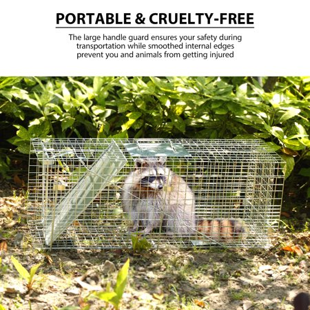 Collapsible 1 Door Live Animal Cage Trap for Racoons Cats Squirrels Opossum Ground Hog 32 x 10 x 12 Inch