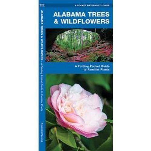 Alabama Trees & Wildflowers: An Introduction to Familiar Species