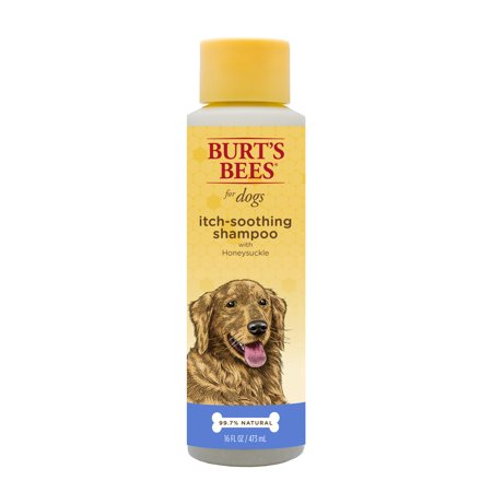 Burt's Bees Itch Soothing Shampoo for Dogs, 16