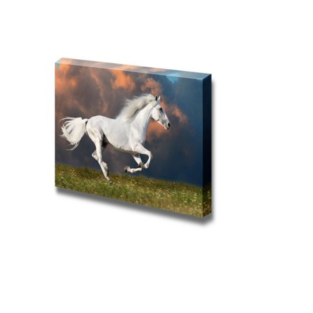 Canvas Prints Wall Art - White Horse Runs/Gallops under the Dark Sky ...