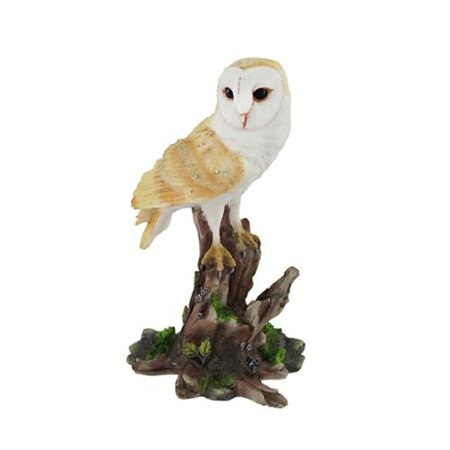 Barn Owl Vigilantly Perched on Tree Stump Statue