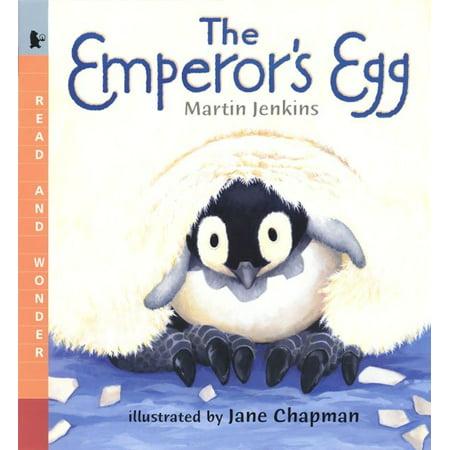 The Emperor's Egg Big Book : Read and Wonder Big Book](Bug Eggs)