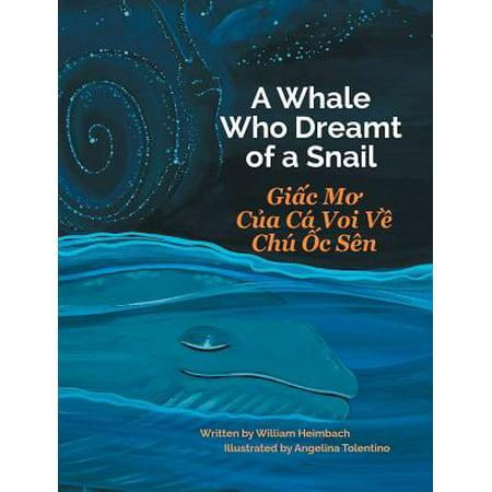 A Whale Who Dreamt of a Snail / Giac Mo Cua CA Voi Ve Chu Oc