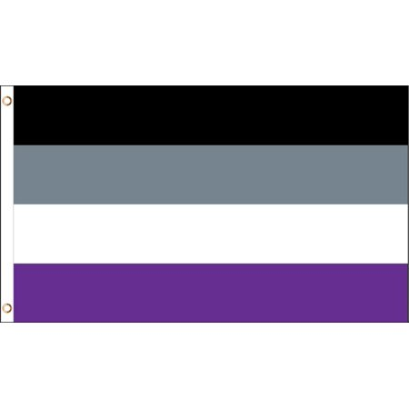 Asexual Rainbow Pride LGBT Polyester 3x5 Foot Flag Gay Lesbian Bisexual LBGTQ (Rainbow Flags)