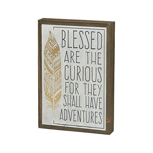 "Collins 11"" Wood Block ""Blessed are the Curious"" Decorative Barn Shelf Sitter"