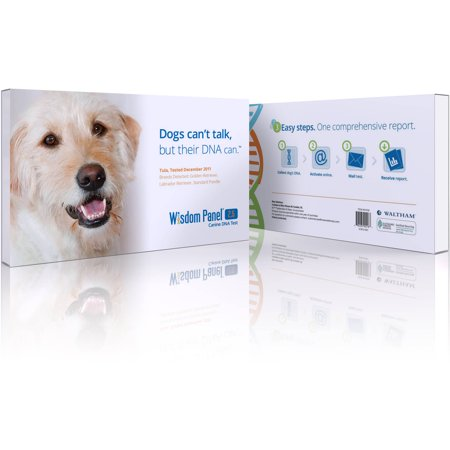 Dog Breed Testing Kit Reviews