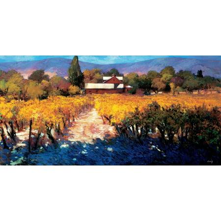 Vineyard Afternoon Stretched Canvas - Philip Craig (24 x 48)](Vineyard 48 Halloween)