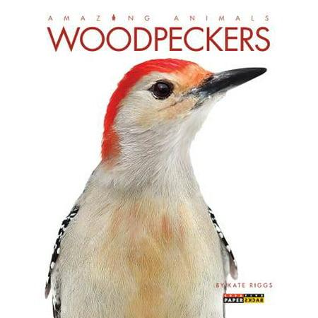 Woodpeckers Animals (Amazing Animals: Woodpeckers)