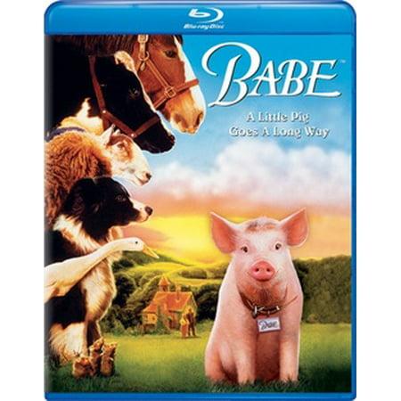 Babe (Blu-ray) - Pirate Babes
