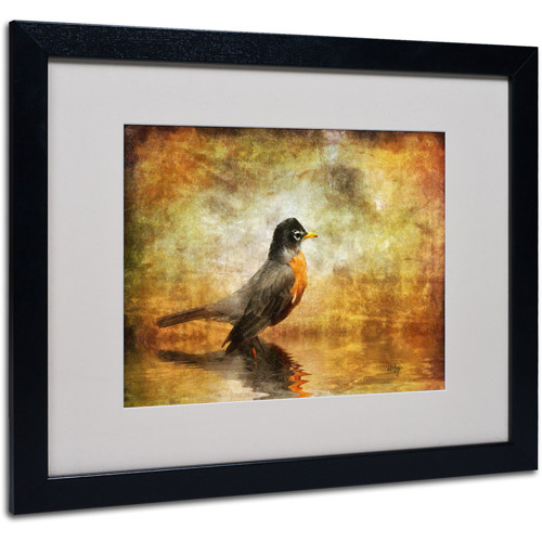 "Trademark Fine Art ""The Robin"" by Lois Bryan, Black Frame"