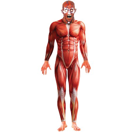 Anatomy Man Adult Halloween - Halloween Headstones Uk