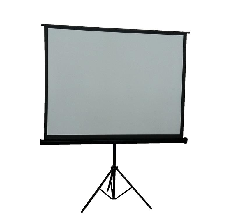 "100"" Portable Projection Screen"