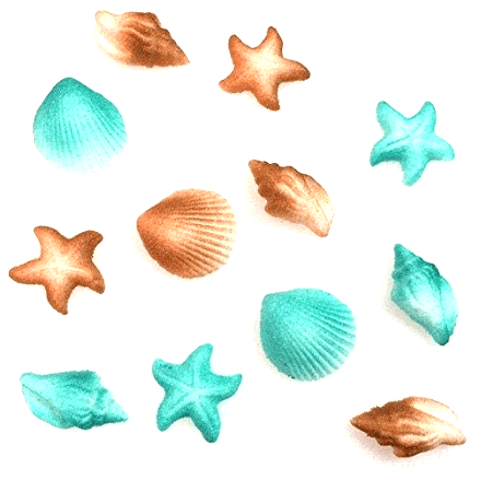 12pk Sea Creatures Beach Sea Shell Star Cake Cupcake Sugar Decoration Toppers - Teal