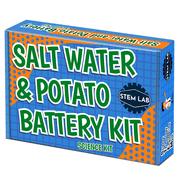 Salt Water + Fruit + Veggie Battery STEM kit for kids 8-10