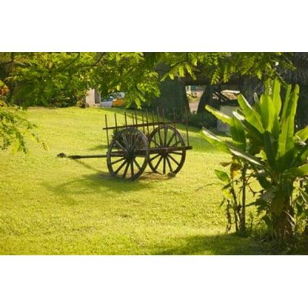 Domaine de Severin Rum Distillery and Sugar Cane Cart Guadaloupe Caribbean Canvas Art - Walter Bibikow DanitaDelimont (36 x 24)